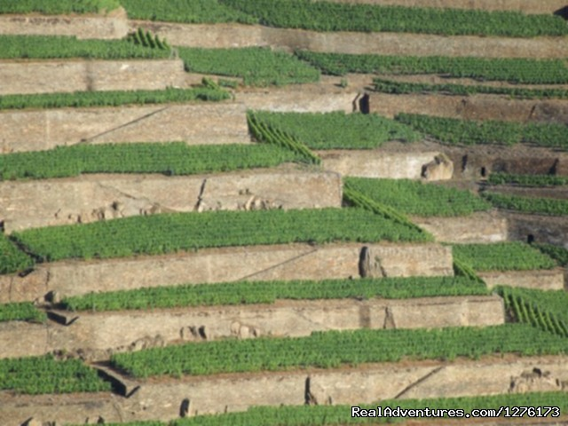 Image #13 of 26 - Douro, the Old Ways