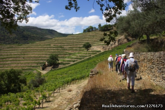 Image #17 of 26 - Douro, the Old Ways