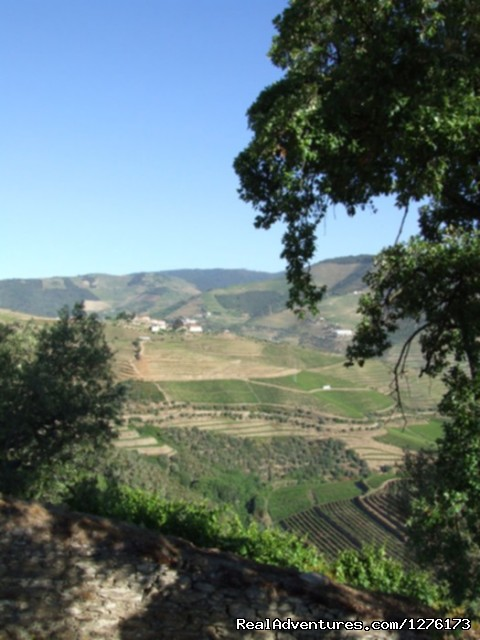 Image #23 of 26 - Douro, the Old Ways
