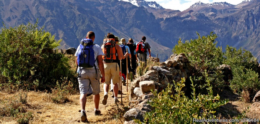 Having fun hiking down to the colca canyon | Image #3/20 | Colca Canyon trek Arequipa -Per?