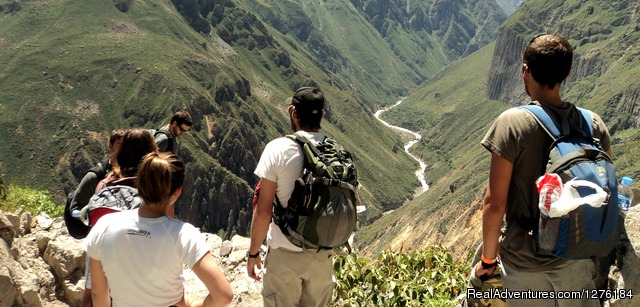 View of the Colca Canyon - Colca Canyon trek Arequipa -Per?