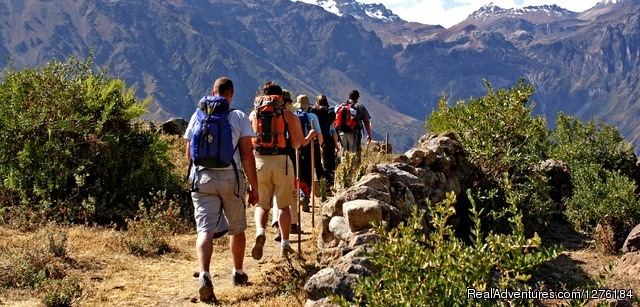 Having fun hiking down to the colca canyon - Colca Canyon trek Arequipa -Per?
