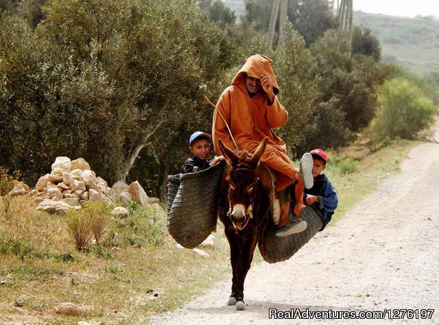 - Morocco Tours - Sahara Camel Trek- Morocco Travel.