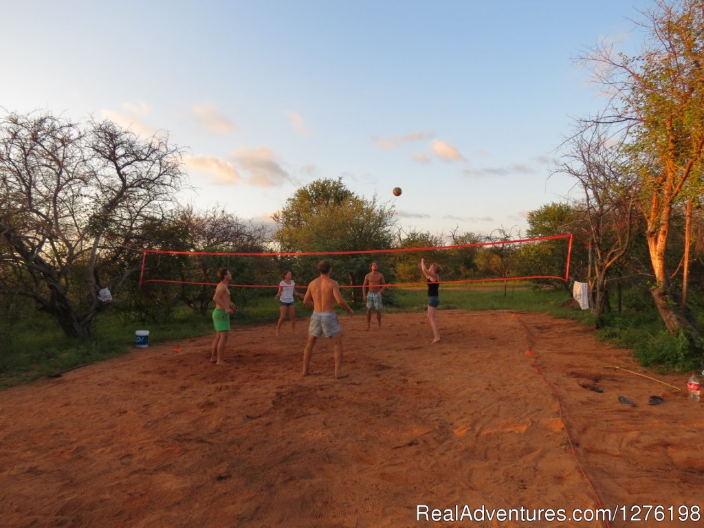 A bit of volley ball after work | Image #5/12 | Wildlife Volunteering South Africa