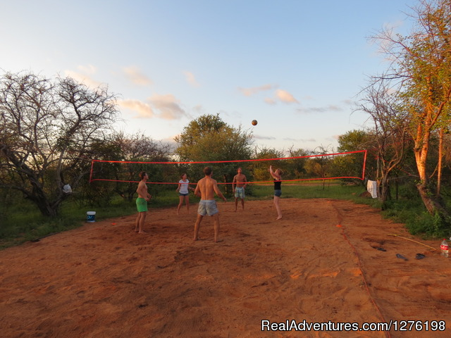 A bit of volley ball after work - Wildlife Volunteering South Africa