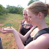Volunteers with chameleon
