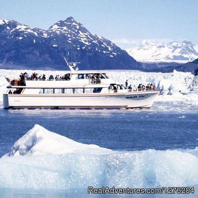 Cruising the Prince William Sound | Image #12/23 | Tsaina Lodge -Helicopter Fishing & Adventures