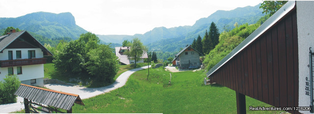 View from our house on mountains - Apartment Brglez Bled 4-6