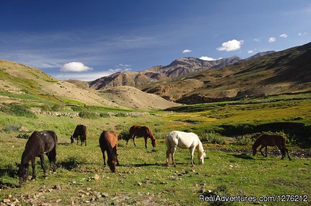 Trekking in Himalaya - Adventure in Indian Himalaya