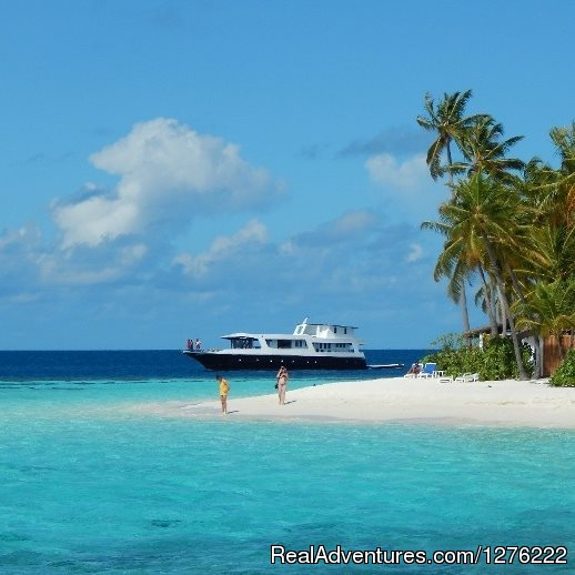 NEW: Snorkel Cruise in Maldives: