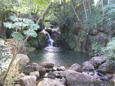 Brazil waterfall and swimming - Writing & Yoga Workshops