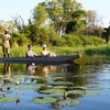 Okavango Delta In Botswana Wildlife & Safari Tours Botswana