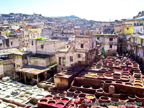 Fes Tanneries - Best Of Morocco Experience