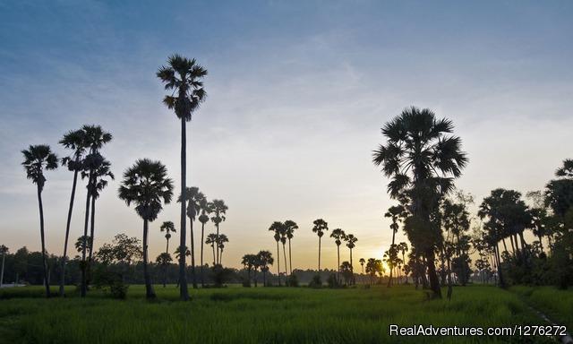 Image #2 of 6 - Beyond Angkor: Battambang and its Countryside