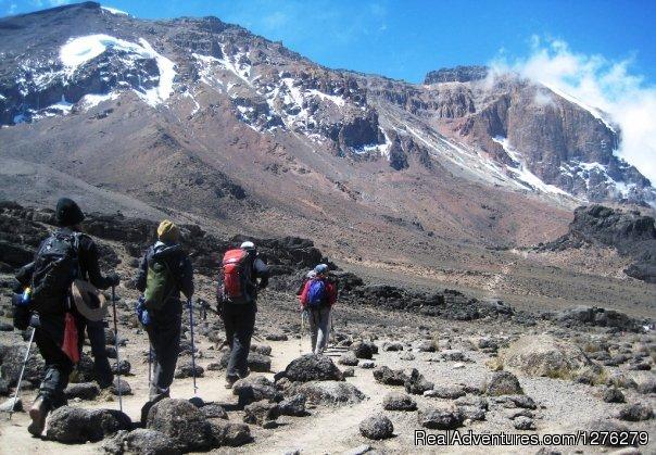Kilimanjaro 2 - Mount Kilimanjaro Trekking - Machame Route