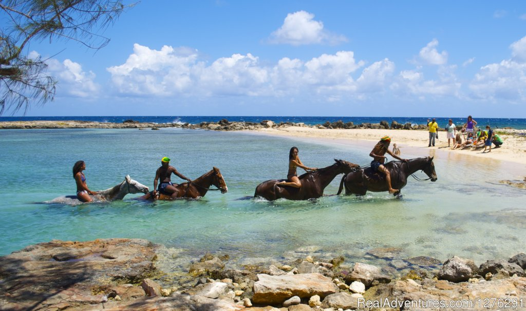 Ride a Seahorse into Paradise, a fun activity for the whole family. Ride through tranquel farmlands along a beautiful white sand beach to our private beach where you swim in the turquoise waters of the Caribbean Sea with your horse.  Guided tours.