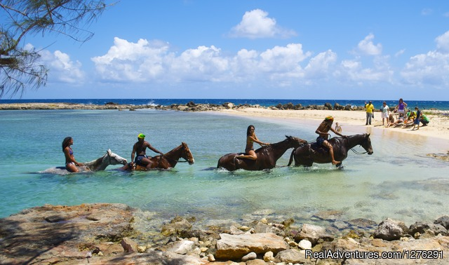 Braco Stables, Jamaica Horseback Ride n' Swim Tour