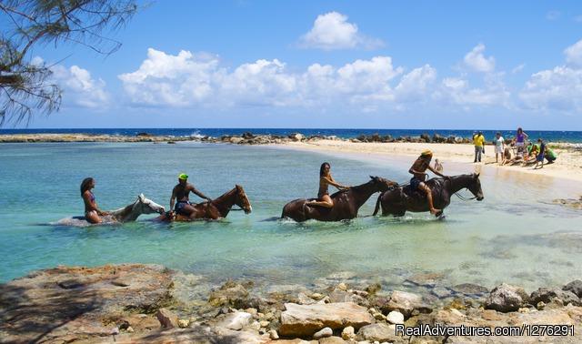 Braco Stables, Jamaica Horseback Ride n' Swim Tour Rise a Seahorse into Paradise