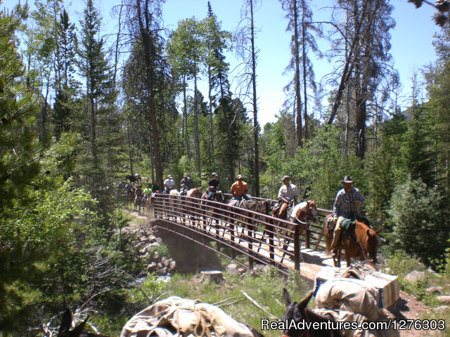 Headed into the back country - Horseback Wilderness Camping & Fishing Trips