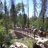 Horseback Wilderness Camping & Fishing Trips