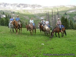 Summer Get Away on Horses With Boulder Basin Outf Cody, Wyoming Horseback Riding