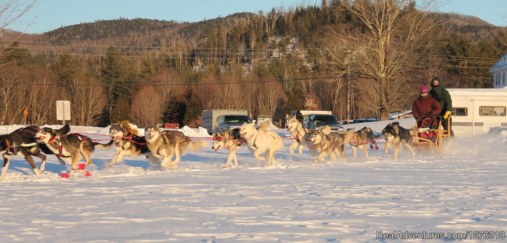 Educational dog sled tours and short rides by daylight, moonlight, headlight. Great for families, groups, couples and individuals. Fall & Winter schedule.  Friendly,  lovable huskies and a family of mushers await you. Thornton, Waterville, Squam Lake