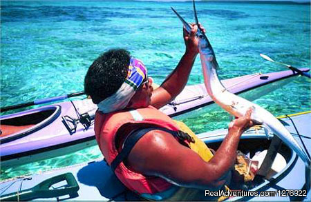 Long Tom for Dinner Anyone? - Tropical Kayak Adventures in the Kingdom of Tonga