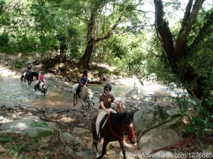 Learn Natural Horsemanship or  Bitless trail ride. Santiago de Puriscal, Costa Rica Horseback Riding
