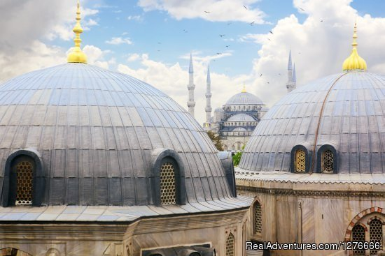 Istanbul tour operator offering daily istanbul tours, bosphorus cruises, shore excursions, day trips and Turkey tours.