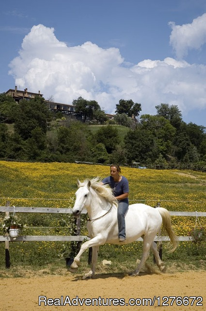 Horse riding - Relax and Beauty in Tuscany Maremma