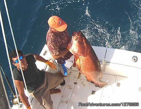 Red Snapper (#3 of 10) - CR Luxury Rentals & Fishing