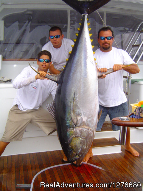 Yellow Fin Tuna (#4 of 10) - CR Luxury Rentals & Fishing