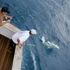 CR Luxury Rentals & Fishing