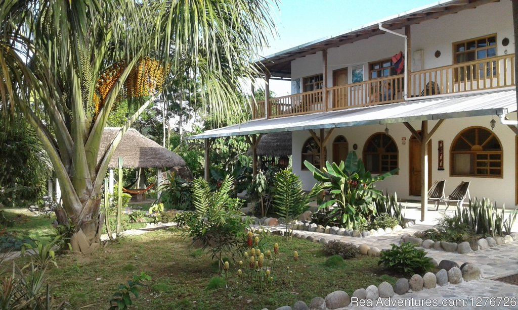 Ecuadorian Jungle on a budget Banana Lodge Misahualli, Ecuador Bed & Breakfasts