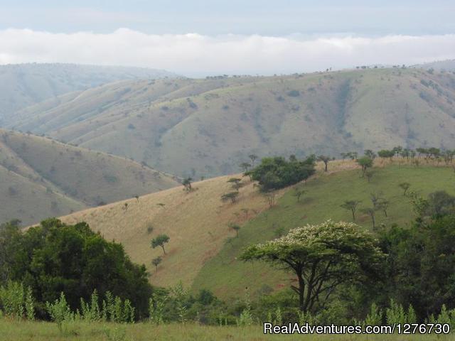 Rwanda - Uganda Tours and Safaris