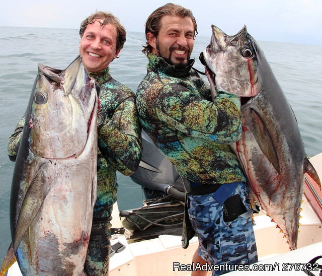 Panama Blueturtle Spearfishing & Economy Fishing: Panama Blueturtle Spearfishing Safari