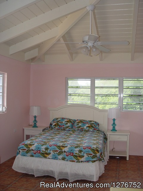 Master BR in Slow Mocean king bed - Private house on the Smallest of the USVI