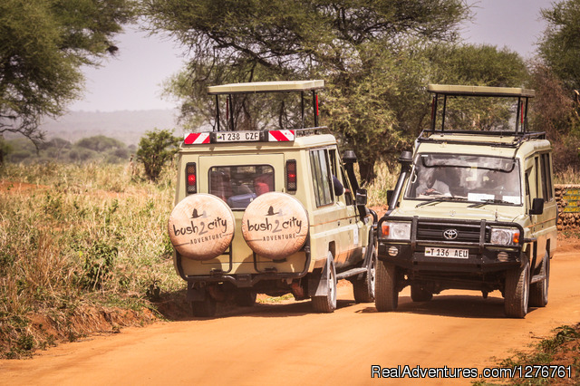 Tanzania Wildlife safaris, Kilimanjaro & Zanzibar: Bush 2 City Adventure
