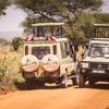 Tanzania Wildlife safaris, Kilimanjaro & Zanzibar Arusha, Tanzania Wildlife & Safari Tours