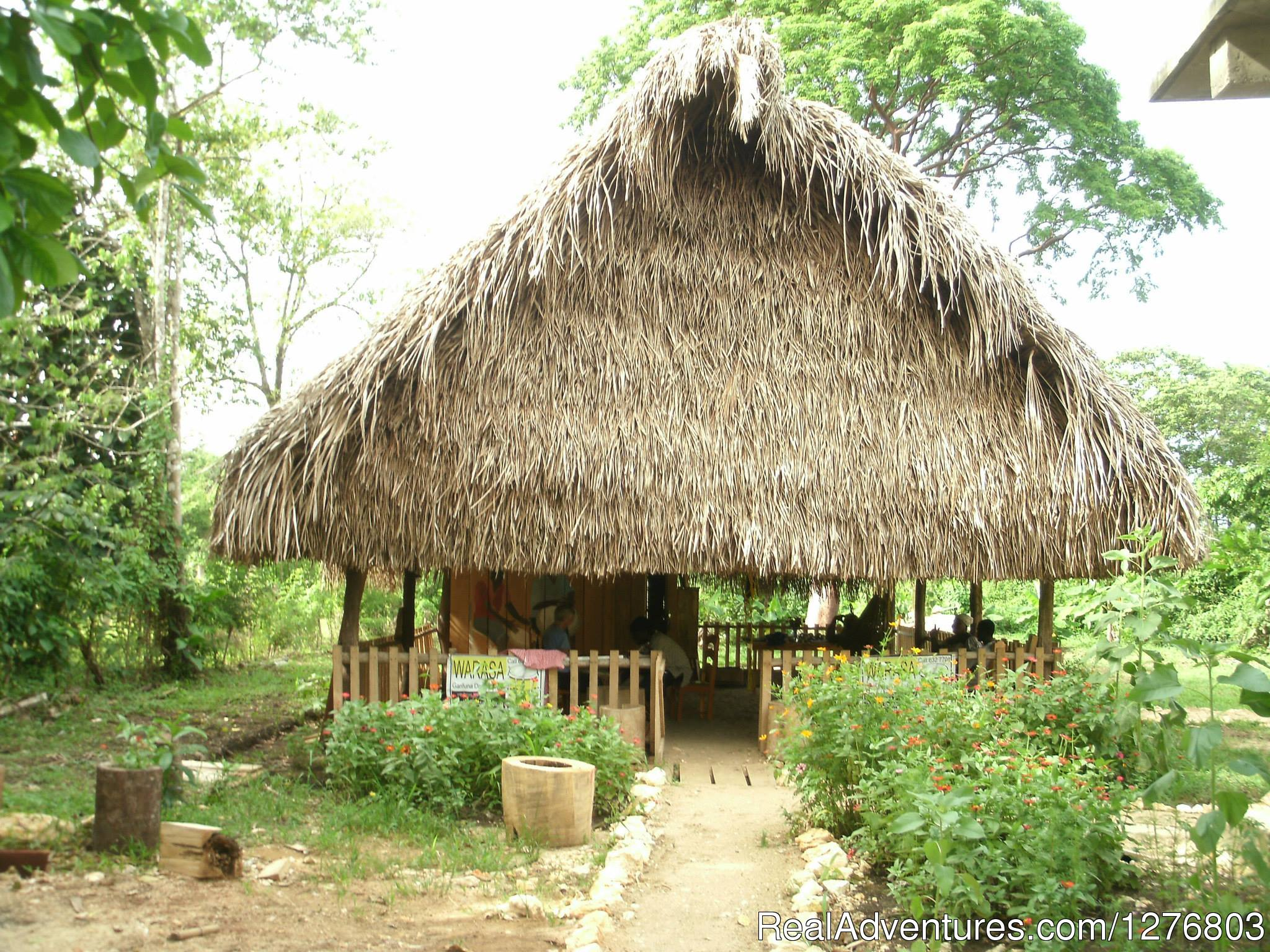 Our traditional thatch on the edge of town | Image #1/7 | Punta Gorda, Belize | Cultural Experience | Authentic Garifuna Culture at Warasa Drum School