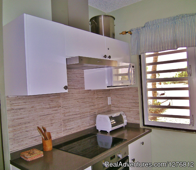 Renovated kitchen - 30% off thru Dec. 31, Spectacular Oceanfront Condo