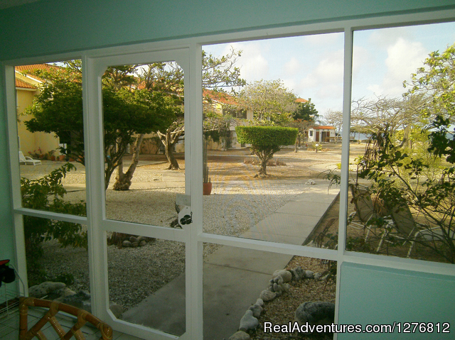 View from patio to sea - 30% off thru Dec. 31, Spectacular Oceanfront Condo