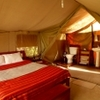 safaris bron in Kenya and Tanzania Nairobi, Kenya Tourism Center