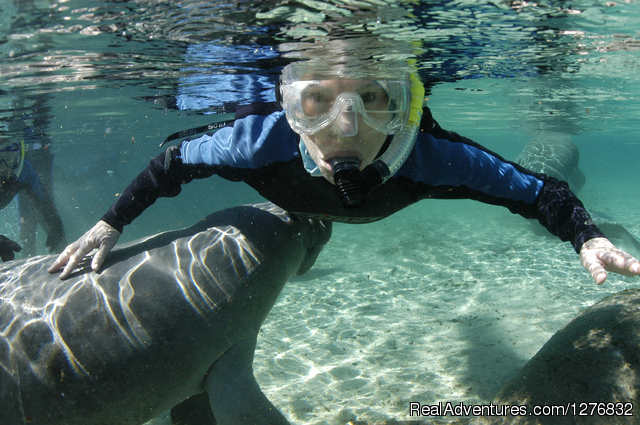 Snorkeling Eco Tours with Manatees