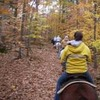 Horseback Trail Riding Milton, Florida Horseback Riding