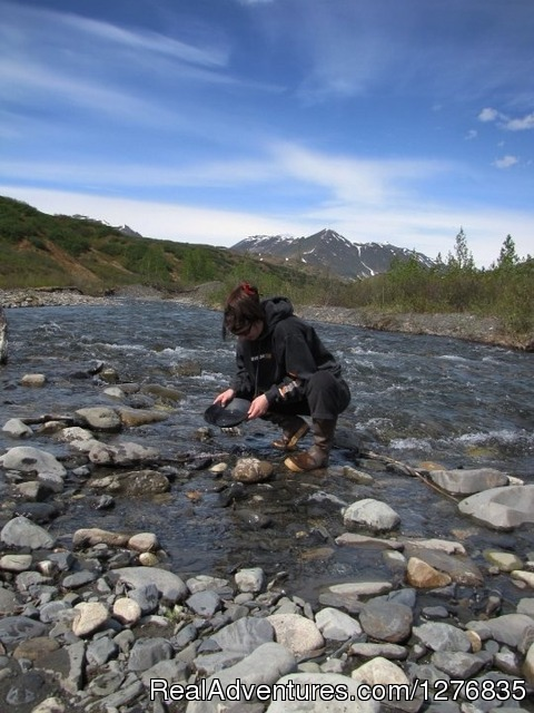 Gold Panning in Petersville, Alaska - Best Denali View ATV & Snowmobile Tours in Alaska