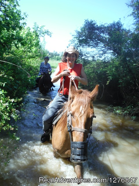 Over some roads and under others. - Horseback riding/lessons on beautiful Spring Creek