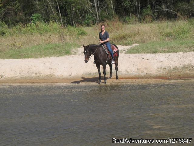 Walk with us through the creek: - Horseback riding/lessons on beautiful Spring Creek