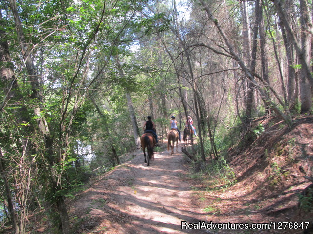 Shade or sun: - Horseback riding/lessons on beautiful Spring Creek
