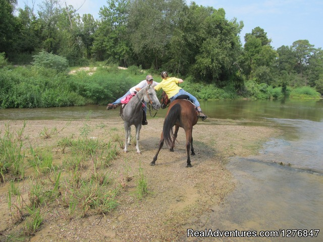 Trying to hug a friend on horseback is not easy. - Horseback riding/lessons on beautiful Spring Creek